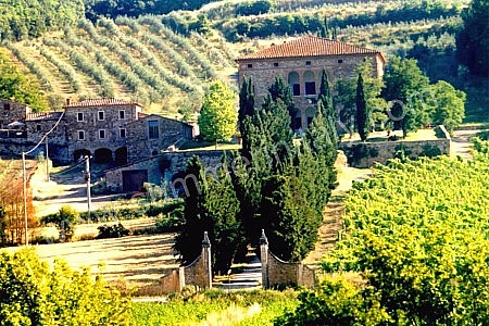 villa beata a is a splendid apartment that covers the entire top floor of an ancient country manor made of stone it sleeps 12 people