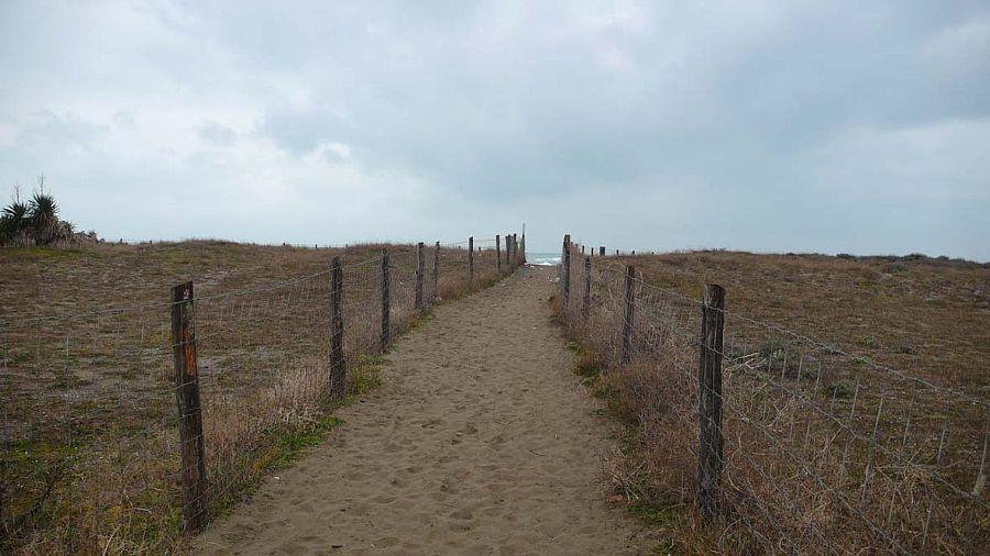 Free Beaches In Forte Dei Marmi